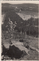 Aus Dem Erzgebirge Ak126588 - Ohne Zuordnung
