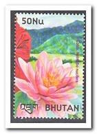 Wit Rusland 2002, Postfris MNH, Flowers - Wit-Rusland