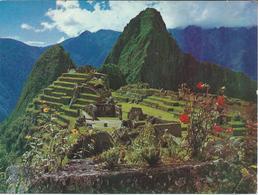 Peru - Machupicchu Postcard - Peru