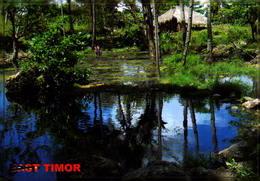 TIMOR LESTE,  A SMALL LAKE AT LAUTEM  [40605] - Timor Oriental