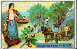 Chromo & Image - Fiches Illustrées - Récolte De Figues En TURQUIE -TB. Etat - Picture Cards
