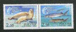 Russie** N° 6752 - 6753 - Phoque Et Esturgeons - 1992-.... Fédération