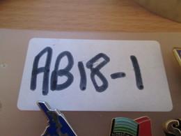 AB18-1 Pin's Pins : BEAU ET RARE :  ARTHUS BERTRAND / FRANCE TELECOM INTELCOMFRANCE - France Telecom