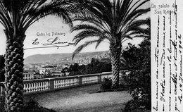 CPA UN SALUTO DE SAN REMO - ENTRE LES PALMIERS - San Remo