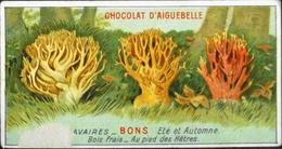 BELLE CHROMO - Edition Du Chocolat D'Aiguebelle - Quels Sont Les Bons Et Mauvais Champignons - TBE - Aiguebelle