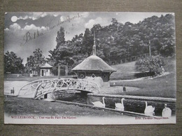 Cpa Willebroek Willebroek - Une Vue Du Parc De Naeyer - Edit. Thomas Baggerman - 1904 - Willebroek