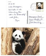 5002g: Fu Feng, Panda Aus Wien- Schönbrunn, Auf Bedarfspostkarte Mit Pers. Marke, 2500 Baden Bei Wien, 24.11.2017 - Ours