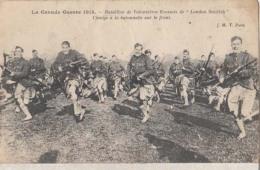 Guerre De 1914 16 -  Batailon De Volontaires Ecossais De London Scottih : Achat Immédiat - Régiments
