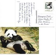 5002j: Fu Ban, Panda Aus Wien- Schönbrunn, Auf Bedarfspostkarte 2410 Hainburg- Zustellbasis, 4.12.2017 - Ours