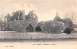 58 - Brinay - Le Château De Palluau - Other Municipalities