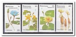 Botswana 1981, Postfris MNH, Flowers, Christmas - Botswana (1966-...)