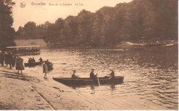 Bruxelles - CPA - Brussel - Bois De La Cambre - Le Lac - Bossen, Parken, Tuinen