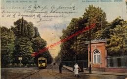 La Pépinière Et L'Harmonie - Tram - Antwerpen - Antwerpen