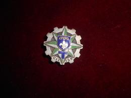 INSIGNE CIT 159  FAB DP - Armée De Terre