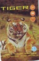 Télécarte  * Animal * TIGRE * TIGER (885)  FELIN *   Phonecard * Telefonkarte * TIJGER - Jungle