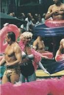 René Frese 'Gay Pride'  2001 - Postales