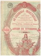 Ancienne Action - La Coloniale Industrielle -Titre De 1899 -déco - Afrique