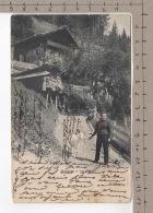 Paysage à Val D'Illiez (1902) Chèvre / Ziege / Goat / Capra - Animaux & Faune