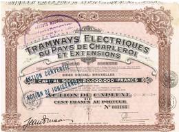 Action Ancienne - Tramways Electriques Du Pays De Charleroi Et Extensions - Titre De 1929 -N°003164 - Chemin De Fer & Tramway
