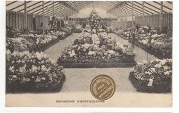 Cp Exposition D' Horticulture - Paris - Chrysanthemes - Tentoonstellingen