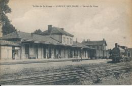FRANCE VIREUX MOLHAIN VUE DE LA GARE - Gares - Avec Trains