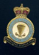 Ancien Insigne émaillé De La Royal Air Force N°1 Parachute Training School -- Ins7 - Armée De L'air