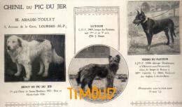 CHENIL DU PIC DU JER / MONTAGNE PYRENEES BERGER DE BEAUCE & PYRENEES / LOURDES / H.P.  / PUB 1925 - Vieux Papiers