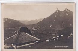 Gruyères - Chalet Du Mongeron, Buvette D'alpage. Vaches Au Pâturage - FR Fribourg