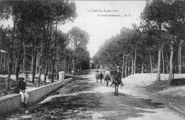 B50967 La Baule -  Le  Bois D'Amour - Non Classés