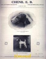 CHENIL E. B. / ETTORE BUGATTI / MOLSHEIM / BAS RHIN  / PUB 1928 - Vieux Papiers