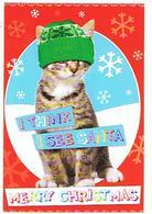 CHATS  I THINK I SEE SANTA  CARTE MERRY CHRISTMAS  ....  ****     A   SAISIR   ***** - Katten