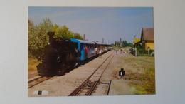 D158243  Hungary -  Train Railway  - Engine  MÁV RT: Kecskemét -Bugac -Steam Engine  1992 - Eisenbahnen