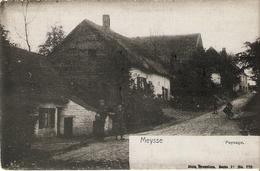 Meysse : Paysage - Meise