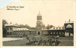 D1284 Curtea De Arges Palatul Regal - Rumänien