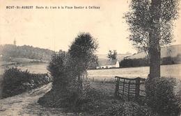 Mont Saint Aubert - Route Du Tram à La Place Sentier à Cailloux - Tournai