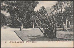 Botanic Gardens, Cape Town, Cape Province, 1906 - RAS Postcard - South Africa