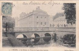 Cp , BELGIQUE , BELOEIL , Le Château Du Prince De Ligne (face Latérale) - Beloeil