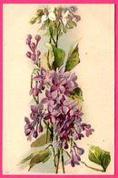 Bouquet De Fleur - Campanules Violettes Et Blanches - Campanule - N° 958 - Blumen