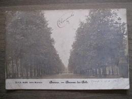 Cpa Anvers Antwerpen - Avenue Des Arts - DVD 15.872 Série Mercure - Antwerpen