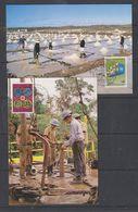 UNO Vienna 1993  Handel Und Entwicklung 2v 2 Maxicards (38617) - Maximumkaarten