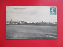 CPA 85 SAINT MICHEL EN L'HERM VUE D'ENSEMBLE - Saint Michel En L'Herm