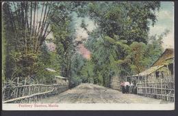 "PHILIPPINES - ASIE - CPA ""Féathery Bamboo, Manila"" Ecrite En 1909 - B/TB - - Filippine"