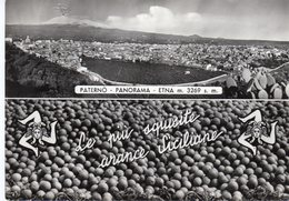 Sicilia - Catania - Paterno - Panorama Con Etna - - Catania