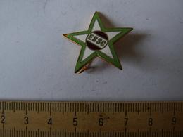 Insigne Décoration Broche Ancienne  émaillée E S S C ETOILE MILITAIRE - Army & War