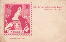 Spottpostkarte Ungebraucht (br3402) - Svizzera