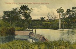 Antigua, B.W.I., Fiennes And Sweets Reservoirs From North (1910s) Postcard - Antigua & Barbuda