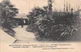 ANTWERPEN - Koloniale Feesten, 6 Juni 1909 - Campement Congolais - Chemin Conduisant Au Village Noir - Antwerpen