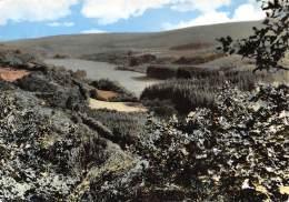 CPM - Vallée Du Nanfurnal - Nassogne
