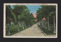 POSTCARD 1920ears PALM BEACHES PALM BEACH FLORIDA USA - Palm Beach
