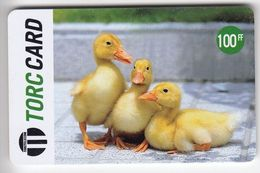 Reunion - PRE-FR-TC-008A, Torc Telecom, 100FF TORC 3 Little Ducks, 10.000ex, Used - Reunion